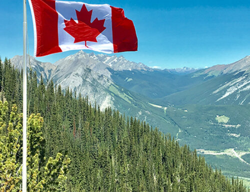 Why Is An Immigration Lawyer Needed To Help You Come To Canada?